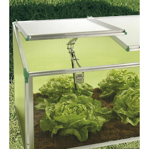 BioStar 2.5 Ft. W X 5 Ft. D Plastic Cold Frame Greenhouse