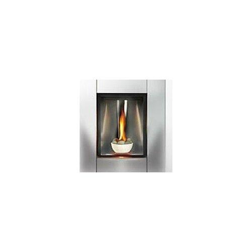 Direct Tureen Direct Vent Gas Fireplace Wayfair