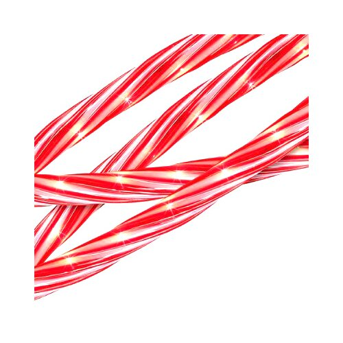 Sienna Candy Cane Indoor/Outdoor Christmas Rope Light