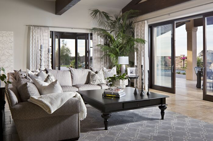 Contemporary Living Room photo by Style On a Shoestring
