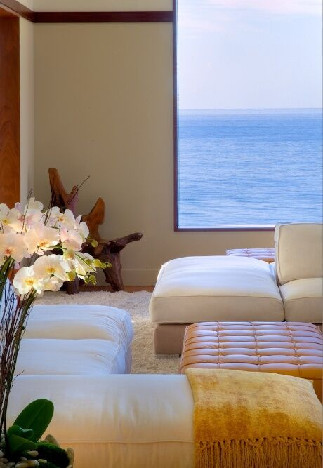 Coastal Living Room photo by Tracy Murdock Interior Design