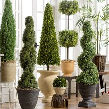 Trim Pickings: Topiaries in Every Size