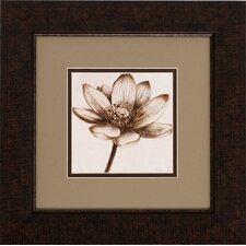 Sepia Lotus 2 Piece Framed Graphic Art Set