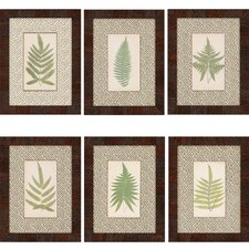Ferns by Lowes 6 Piece Framed Graphic Art Set (Set of 6)