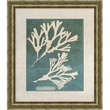 Coral II Giclee Framed Painting Print