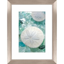 Sea Glass and Sand Dollar Framed Photographic Print