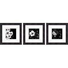 Ebony and Ivory 3 Piece Framed Graphic Art Set