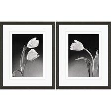 Tulip 2 Piece Framed Graphic Art Set