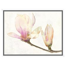 Magnolia Water Color with Glass Coat and Floater Framed on Wrapped Canvas