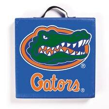 NCAA Florida Gators Outdoor Adirondack Chair Cushion