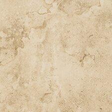 """Brancacci 9"""" x 12"""" Ceramic Field Tile in Fresco Caffe"""