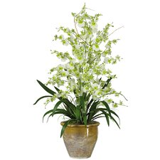 Triple Dancing Lady Silk Orchid Flowers in Green