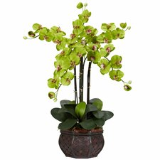 Phalaenopsis with Decorative Vase Silk Flowers in Green