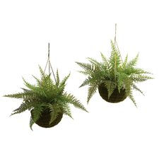 Nearly Natural Fern Hanging Plant in Basket (Set of 2)