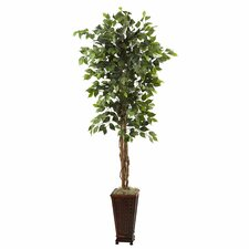 Nearly Natural Ficus Tree in Planter