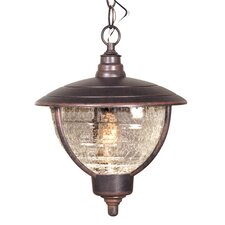 Vista 1 Light Outdoor Hanging Lantern
