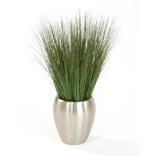 Silk Grass in Vase