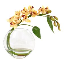 Waterlook Silk Orchid Spray with Glass Disk Vase