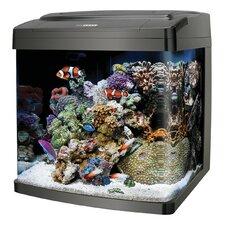 Biocube 14 Gallon Aquarium Kit