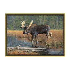 Wildlife Moose Novelty Outdoor Area Rug