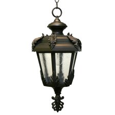 Parisian Elegance 1 Light Outdoor Hanging Lantern
