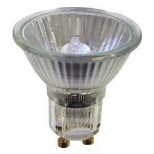 120-Volt Halogen Light Bulb (Set of 9)