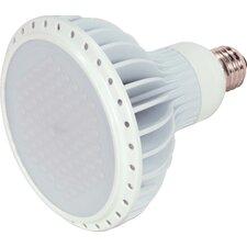 120-Volts LED Light Bulb