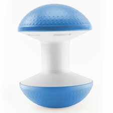 Dome Ballo Exercise Ball Chair