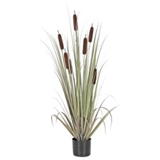 Faux Cattail Grass Tree in Pot