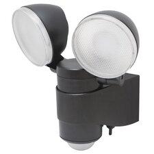 Dual Head Battery-Powered LED Security Spotlight