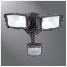 Motion Security 2 Light Semi-Flush Mount