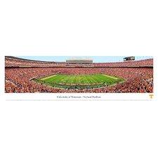 NCAA 50 Yard Line Unframed Panorama