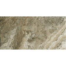 """Archaeology 6.5"""" x 13"""" Porcelain Field Tile in Crystal River"""