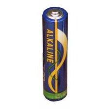 AA Alkaline Batteries (Set of 4)