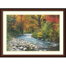 'Forest Creek (i)' Framed Art Print