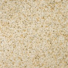 "Natural Stone 12"" x 12"" Granite Field Tile in Empress Gold"