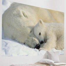 Komar Polar Bears Wall Mural