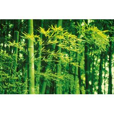 Ideal Decor Bamboo In Spring Wall Mural