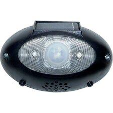 Solar Power Eyewatch Motion Detector