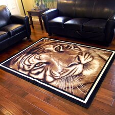 African Adventure Camel Large Tiger Face Area Rug
