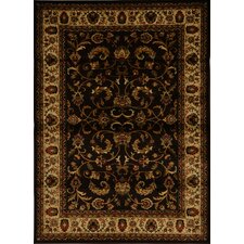 Royalty Brown Area Rug
