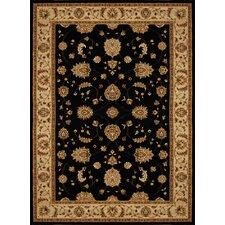 Triumph Black Floral Area Rug
