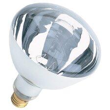 120-Volt Incandescent Light Bulb (Set of 12)