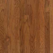 "3"" Engineered Red Oak Hardwood Flooring in Auburn"