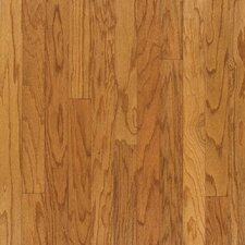 "3"" Engineered Red Oak Hardwood Flooring in Canyon"