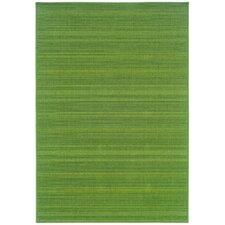 Nassau Indoor/Outdoor Solid Green Area Rug