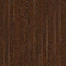"""3-1/4"""" Engineered Oak Hardwood Flooring in Coffee Bean"""