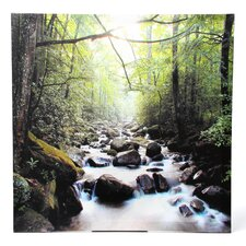 River of Life Photographic Print on Wrapped Canvas