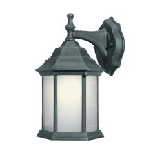 Energy Saving 1 Light Wall Lantern