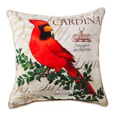 Indoor Outdoor Throw Pillow